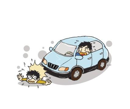开车撞到小动物怎么办?会不会被罚款? 搜狐汽车 搜狐网